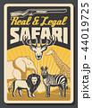 サファリ 狩り 狩猟のイラスト 44019725