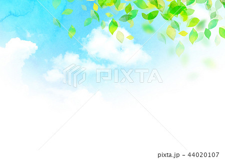 背景素材 空 葉 テクスチャー 44020107