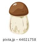 きのこ キノコ 茸のイラスト 44021758
