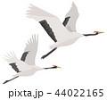 鶴 丹頂鶴 飛ぶのイラスト 44022165
