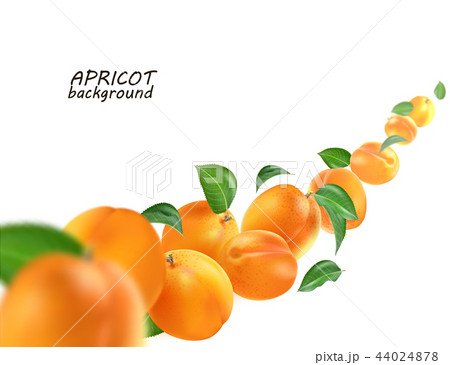 Creative concept with flying apricots and leaves. Whole falling isolated on white background 44024878