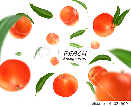 Flying peach. Realistic 3D Vector peaches background. 44024909