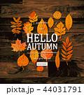 HELLO こんにち こんにちはのイラスト 44031791