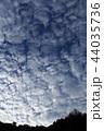 うろこ雲の空 44035736