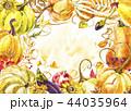 かぼちゃ カボチャ 南瓜のイラスト 44035964
