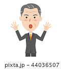 シニア ビジネスマン 44036507