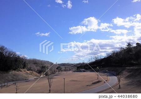 秋の美しい公園の風景と青い空と雲 44038680