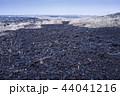 伊豆大島 三原山 溶岩の写真 44041216
