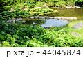 下呂温泉雨情公園 44045824