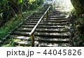下呂温泉雨情公園 44045826