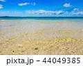 石垣島 ビーチ 海の写真 44049385