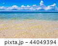 石垣島 ビーチ 海の写真 44049394