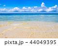 石垣島 ビーチ 海の写真 44049395