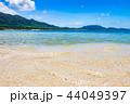 石垣島 ビーチ 海の写真 44049397