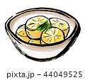 筆描き 野菜 食物 煮物 大根 44049525