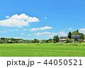 青空 夏 田んぼの写真 44050521