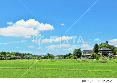 爽やかな青空と農村の風景 44050521