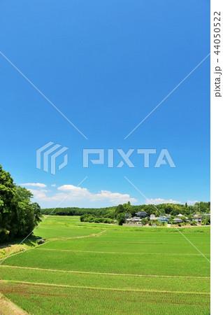 爽やかな青空と田園風景 44050522