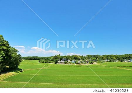 爽やかな青空と田園風景 44050523