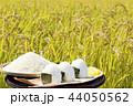 秋 田んぼ 米の写真 44050562