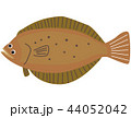 魚 海水魚 ヒラメのイラスト 44052042