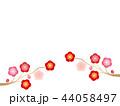 梅 花 紅梅のイラスト 44058497