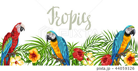Tropical background with parrots. 44059326
