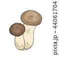 キノコ 野菜 食べ物のイラスト 44061704