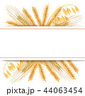 むぎ ムギ 小麦のイラスト 44063454