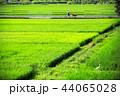 田園風景02 44065028