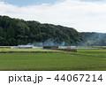 農村風景 初秋 稲架掛けの写真 44067214