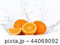 くだもの フルーツ 実の写真 44069092
