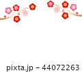 梅 植物 花のイラスト 44072263