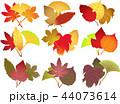 落ち葉 秋 葉のイラスト 44073614