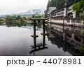 アオサギ 青鷺 日本の写真 44078981