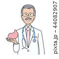 シニア 男性 胃のイラスト 44082907