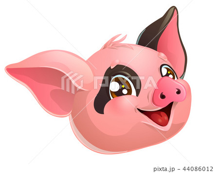 Lovely pink and black pig head on white 44086012