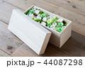 箱に入ったグリーンのプリザーブドフラワー 44087298