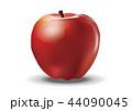 リンゴ アップル 林檎のイラスト 44090045