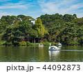 洗足池 公園 池の写真 44092873