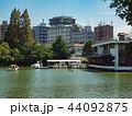 洗足池 公園 池の写真 44092875