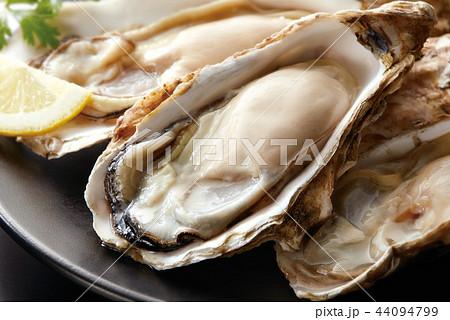 生牡蠣イメージ 44094799