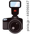 一眼レフカメラ ストロボ付 44096647