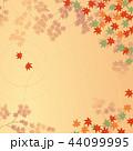 紅葉 2 44099995