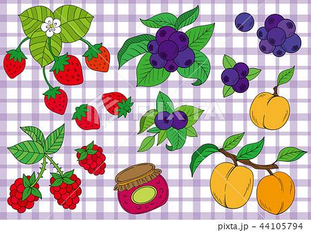 苺やブルーベリー果実のイラスト 44105794