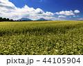 畑 農業 空の写真 44105904