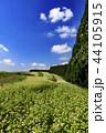 畑 風景 空の写真 44105915