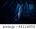 Elf girl in night forest 44114050