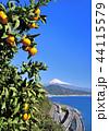 風景 富士山 世界遺産の写真 44115579