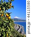 風景 富士山 世界遺産の写真 44115580